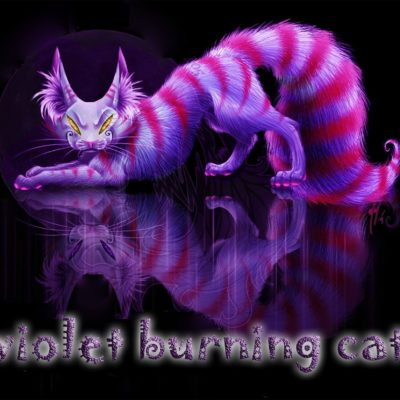 Violet burning cat